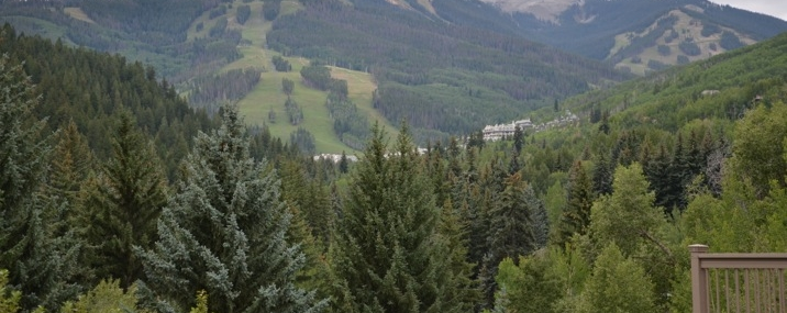46 North Fairway Drive ~ Beaver Creek, Colorado